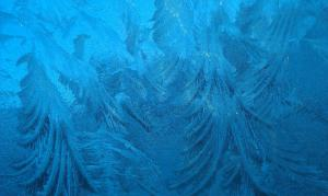 A photo of the frost on the car windscreen on 1st March - just because I like it!