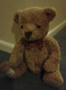 George, a prince among bears - soft focus to protect his identity ;-)