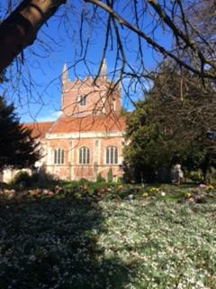 Snowdrops against the East End of St. Mary's 2